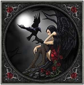 surgery fairy